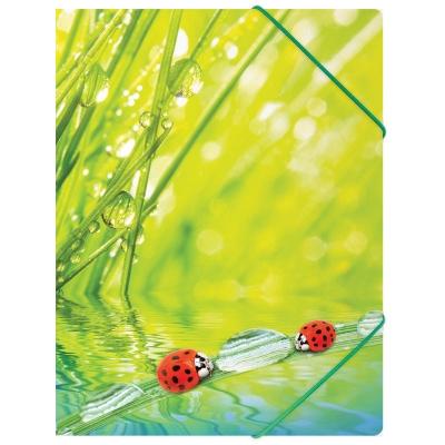Папка на резинке А4 550мкм Ladybird