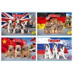 Альбом для рисования А4 16л. World of dogs (ассорти) , на скобе, обложка- мелованный картон, блок- оф